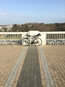 多摩湖自転車